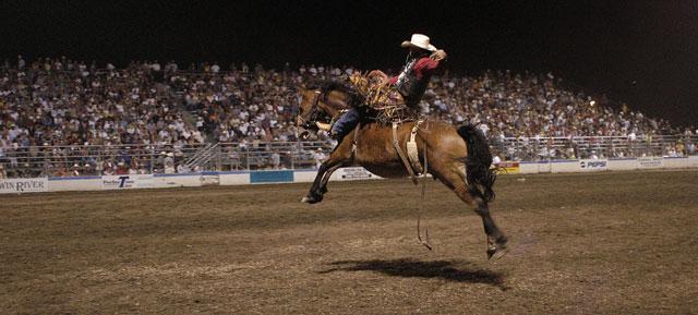 lewiston roundup rodeo visit lewis clark valley